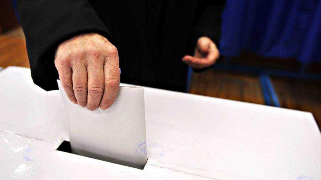 Rezultate neoficiale alegeri europarlamentare Neamț
