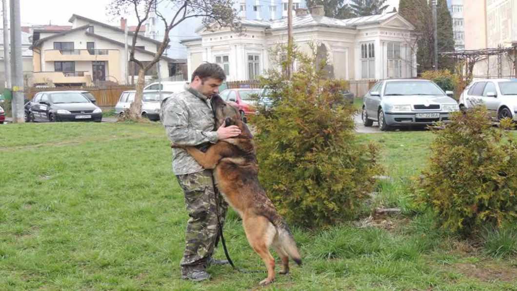 Câinele polițist Odek și conductorul lui premiați pentru profesionalism