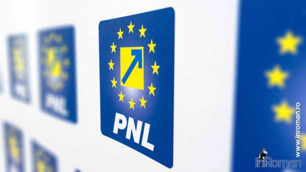 """Senatorul Țapu: """"Alegerile anticipate, singura soluție. PNL este pregătit să preia guvernarea"""""""
