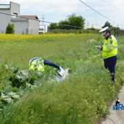 accident Traian 9286