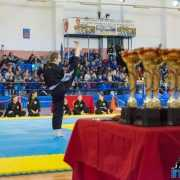 Qwan Ki Do campionatul national 5224