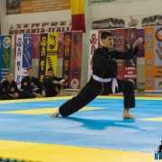 Qwan Ki Do campionatul national 5233