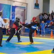 Qwan Ki Do campionatul national 5390
