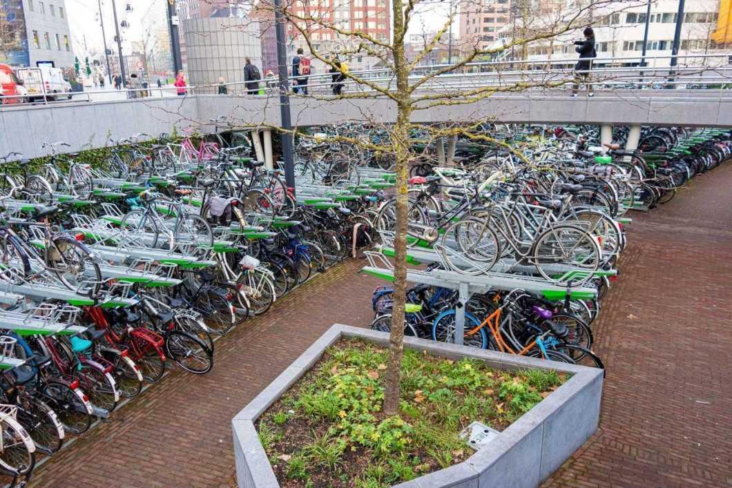 Parcare de biciclete în Rotterdam