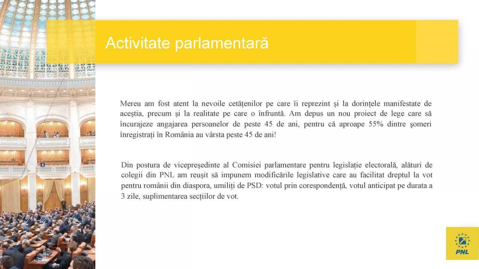 raport de activitate laurentiu leoreanu Page 07 scaled