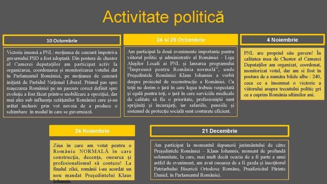 raport de activitate laurentiu leoreanu Page 18