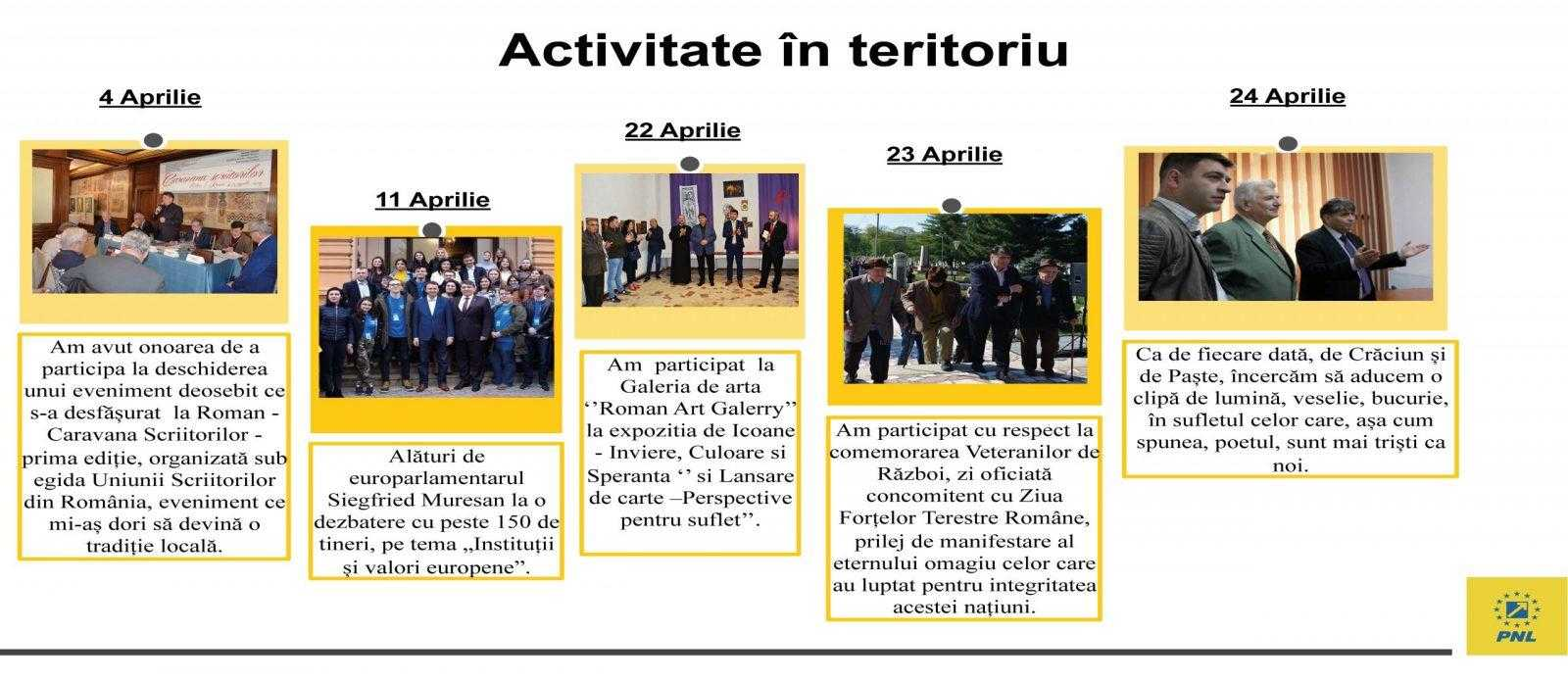 raport de activitate laurentiu leoreanu Page 32 scaled