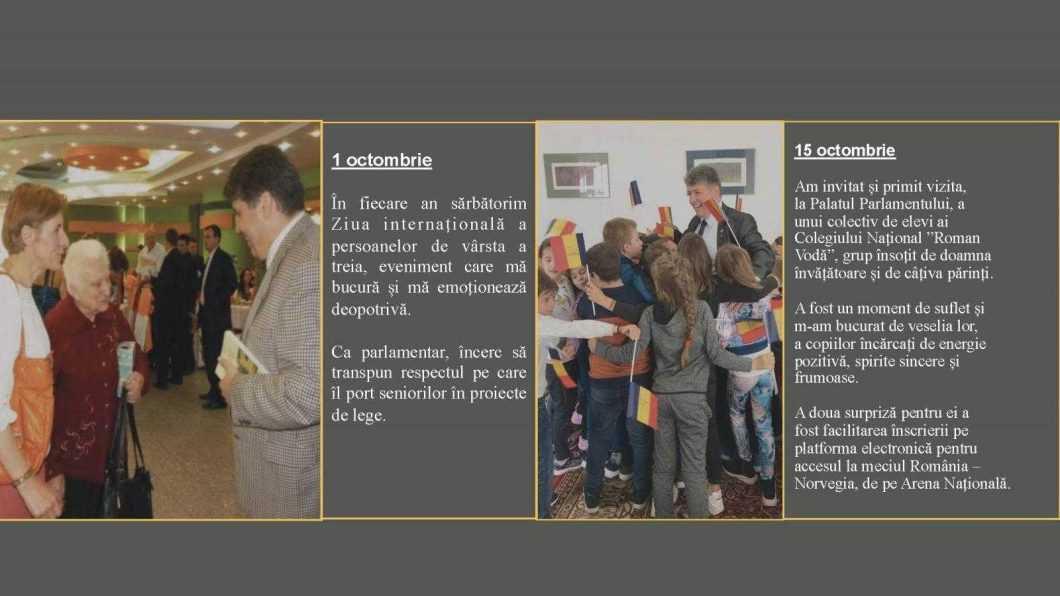 raport de activitate laurentiu leoreanu Page 37